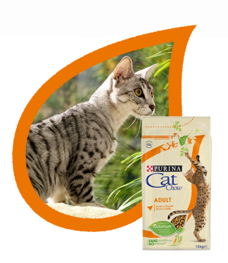 Сухой корм PURINA Cat Chow Adult для взрослых кошек с домашней птицей, уткой и лососем